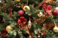 christmas-tree-close-up